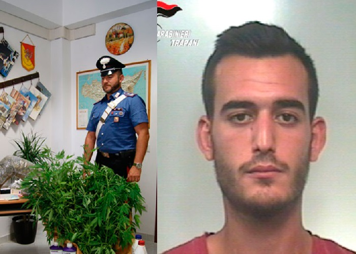 Mazara. Arrestato 24enne scoperto con piantagione di Canapa Indiana presso la propria abitazione