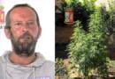Mazara. Arresto in flagranza di due cittadini mazaresi per coltivazione e detenzione ai fini di spaccio di marijuana