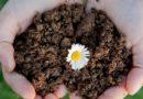 Rifiuti, Musumeci: «Sicilia prima Regione in Italia per regole di compostaggio»