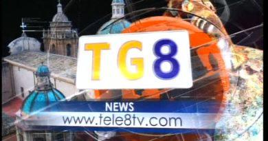 TG8 14 NOVEMBRE<span class='video_title_tag'> -Video</span>