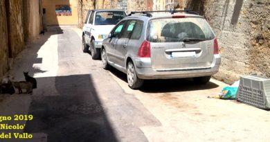 Mazara del Vallo : Gatti o Ratti ?
